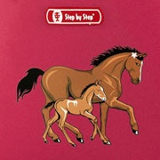 Step by Step Lucky Horses