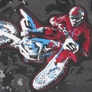 DerDieDas Moto Cross
