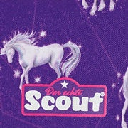 Scout Sternschnuppe