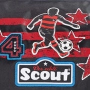 Scout World Cup