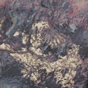 Burton Earth Print
